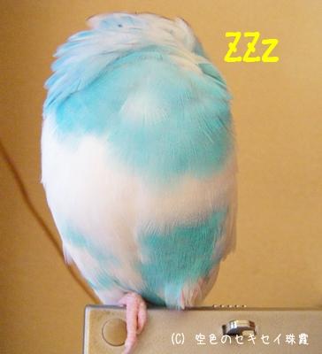 寝てるですよ。