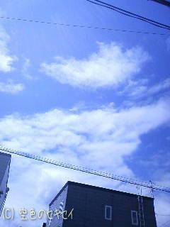 いい天気です