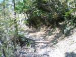 マジで登山道