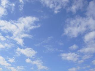 2005-12-25_11-02.jpg