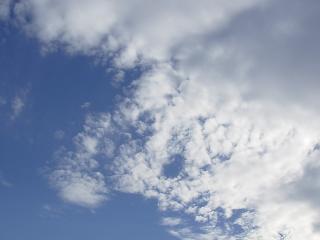 2006-02-14_63-02.jpg