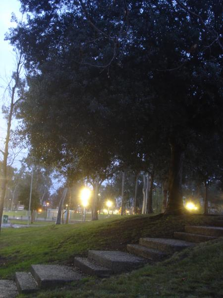 濡れた公園-03