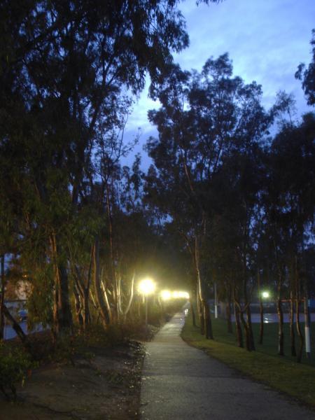 濡れた公園-08
