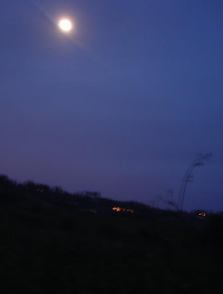 月道-05