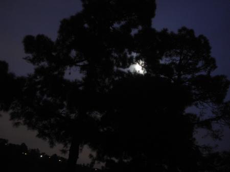 月道-07