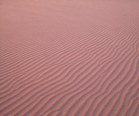 風吹く浜-03