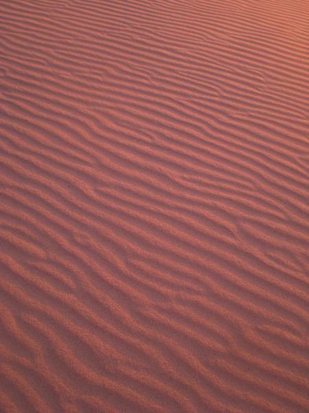 風吹く浜-04