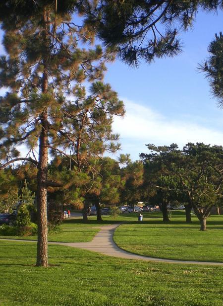 公園-04