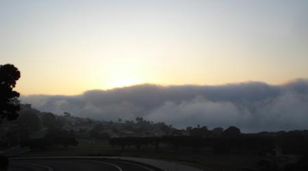 MARINE LAYER-1