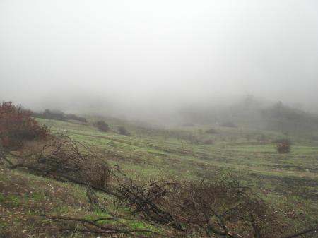 霧の中-06