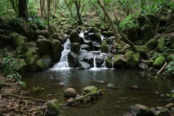 Trail で見える滝
