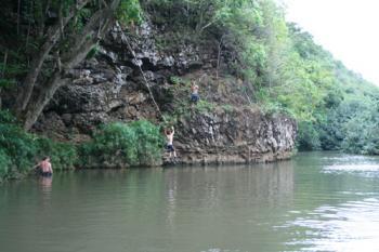Tarzan Jump!