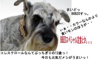 bobzo3.jpg