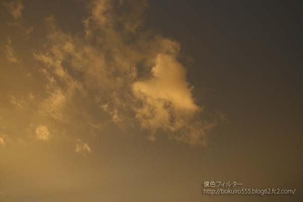 IMG_6071blog.jpg