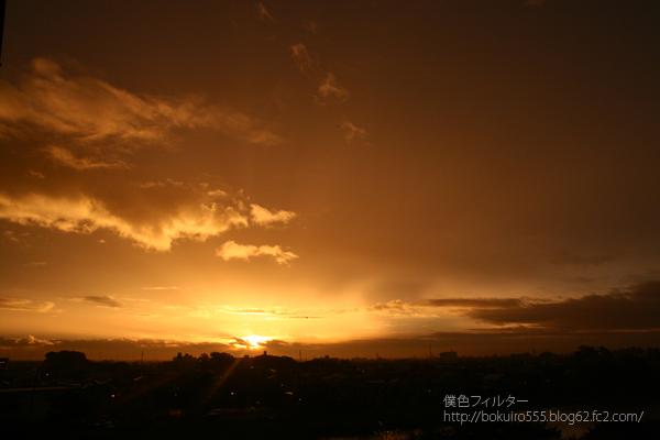 IMG_6079blog.jpg