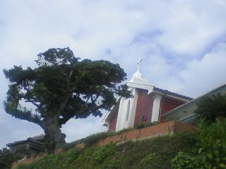 善長谷教会