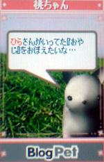momochan10.jpg