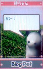momochan18.jpg