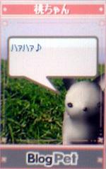 momochan7.jpg