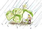 シロバナエンレイソウ:雨宿
