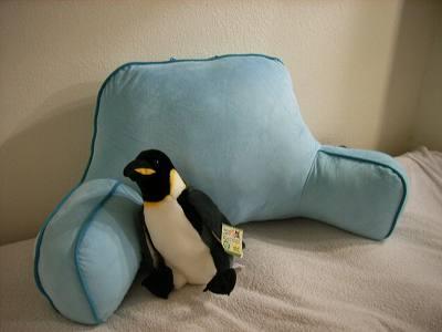注:ペンギンは付いてきません