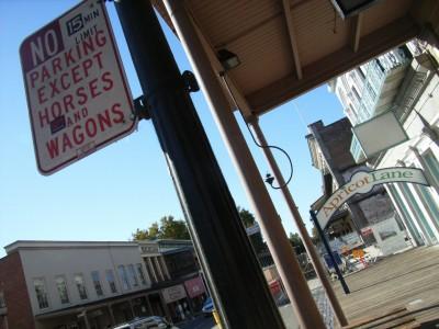 馬と馬車以外駐車禁止