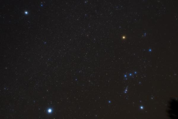 DSC_5583-rdk.jpg