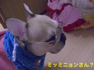 CIMG6913.jpg