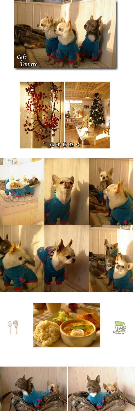 5_20090109044117.jpg
