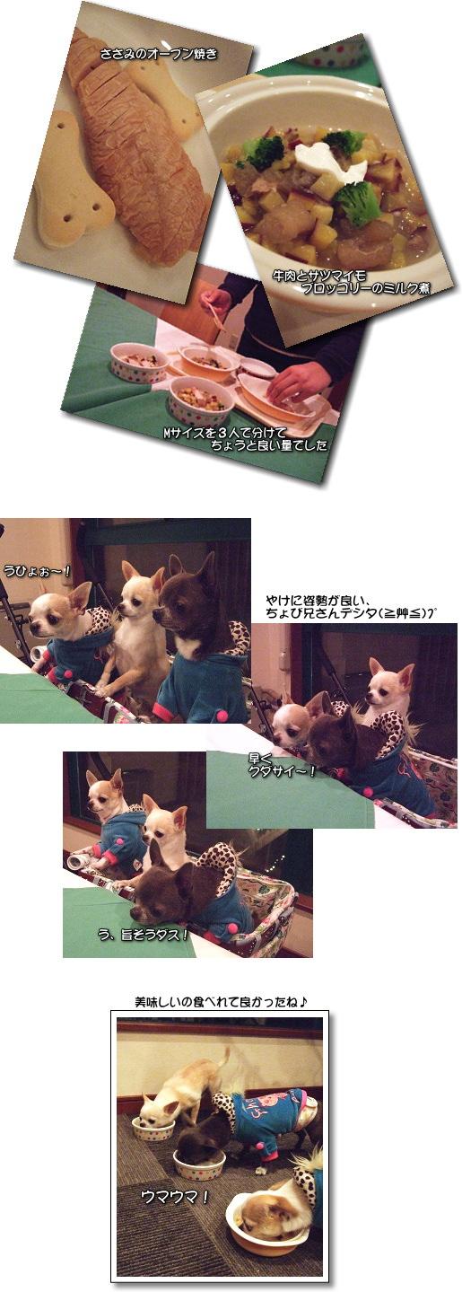 7_20090208143059.jpg