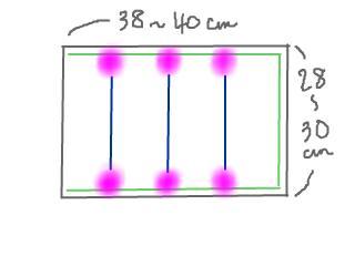 snap_bunbuntail_200955121153.jpg
