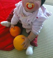 柑橘大好き