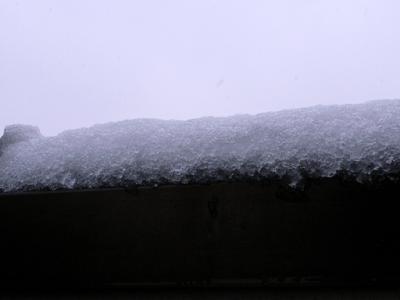 yukifuri1.jpg