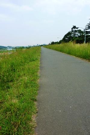 blog_多摩サイ230509