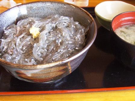 blog_生シラス丼200609