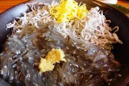 blog_Wしらす丼200609