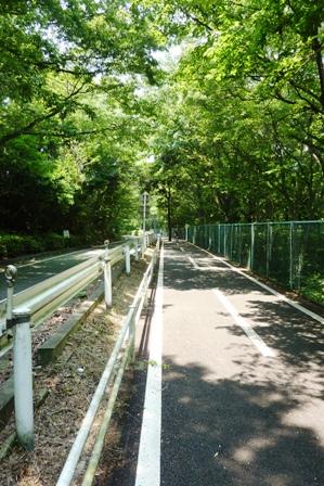 blog_多摩湖自転車道270609