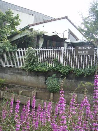 blog_ピンクの花とラグラス270609