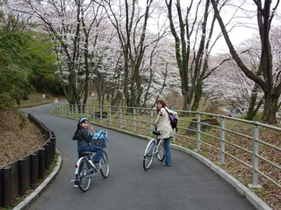 blog_rentacycle050409.jpg