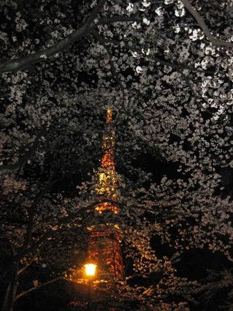 blog_sakuratokyotower040409.jpg