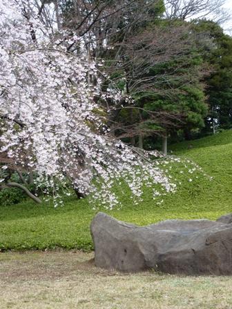 blog_sidaretoishi280309.jpg