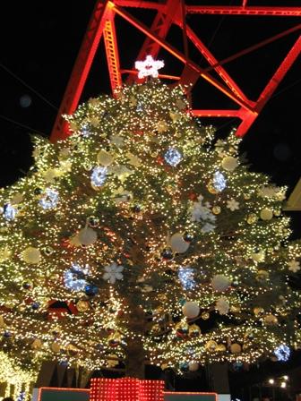 blog_xmastree201208.jpg