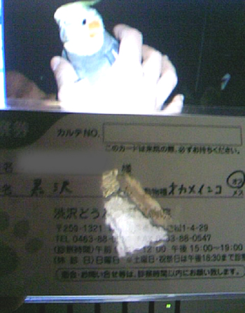 090211_01