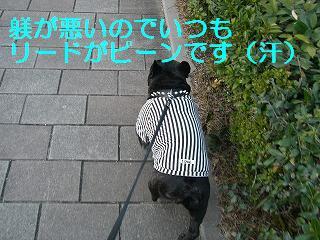 CIMG4164.jpg