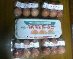 たまごタマゴ卵