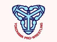 yoko-pro_logo.jpg