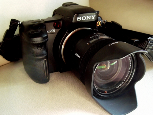 DSC00015-S.jpg