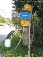 sovasova◇看板