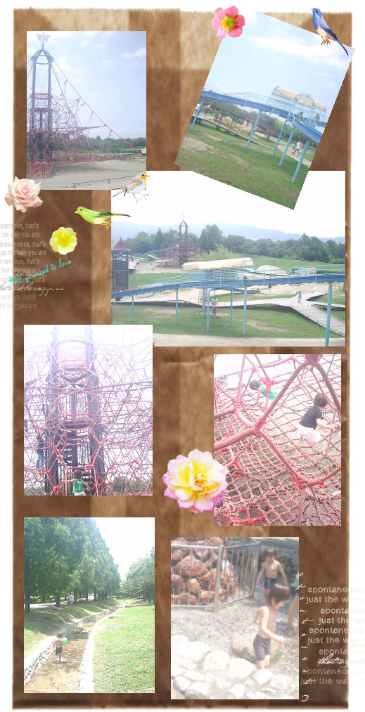 24 公園遊び