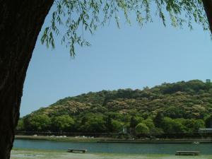 高知鏡川のほとり2